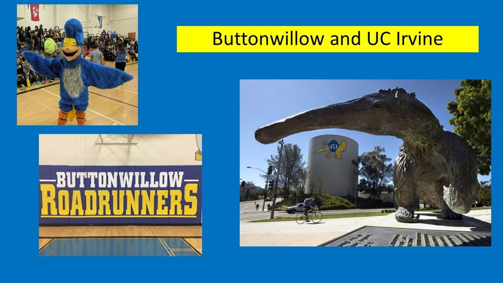 February University of the Month--UC Irvine